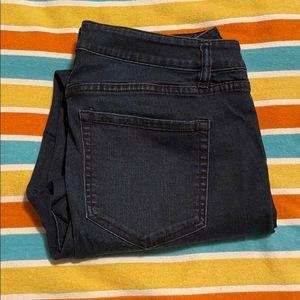 Venezia (Lane Bryant) Dark Wash Skinny Jeans (14)